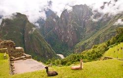 Machupichu Cuzco, Peru fotografering för bildbyråer