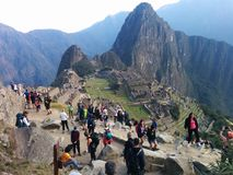 Machupichu royalty free stock images