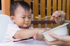 Macierzysty żywieniowy stały jedzenie dla dzieciaka osiem miesięcy w domu Obraz Stock