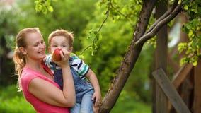 Macierzysty karmienie jej syn z jabłkiem w ogródzie zbiory wideo