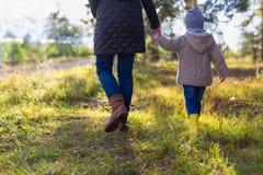 Macierzysty mienie jej dzieciaka ręka podczas gdy mieć spacer w drewnach fotografia royalty free