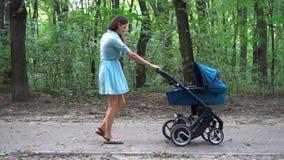 Macierzysty odprowadzenie z pram w parku tło zieleń opuszczać natury klonowego lato mokry zbiory