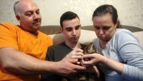 Macierzysty ojciec i syn bawić się z kotem, szczęśliwa rodzina zdjęcie wideo