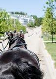 Macinac-Insel-Pferdewagen zum großartigen Hotel Stockfoto
