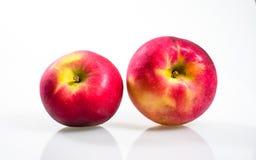 Macintosh Apple på den vita bakgrunden Fotografering för Bildbyråer