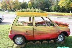 Macizo de flores imagenes de archivo