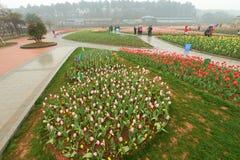Macizo de flores en jardín botánico fotos de archivo libres de regalías