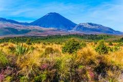 Macizo volc?nico del parque de Tongariro foto de archivo libre de regalías