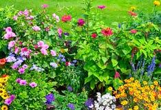 Macizos de flores florecientes imágenes de archivo libres de regalías