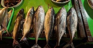 Mackarels line up in a row sold in traditional market photo taken in Jakarta Indonesia Stock Photos