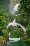 Mackay Wasserfall, Milford Spur Stockfotos