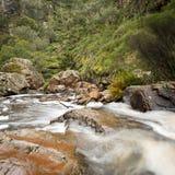 MacKenzie Falls, Grampians Royalty-vrije Stock Fotografie