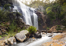 MacKenzie Falls, Grampians Royalty Free Stock Photo