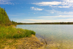 The mackenzie river in the summertime. The riverbanks of a large river running through forested areas of the northwest territories Royalty Free Stock Images