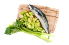 Mackerel Royalty Free Stock Photography