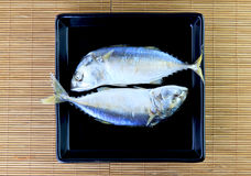 Mackerel Royalty Free Stock Photos