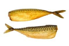 Mackerel. Hot smoked mackerel isolated on white background Stock Image