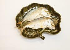 Mackerel. For ingredient food in Thai Royalty Free Stock Images