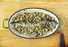 Mackerel baked with clams. Stock Photo