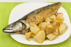 Mackerel baked with vegetables Stock Image