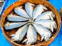 Mackerel in bamboo basket. Thailand Royalty Free Stock Image