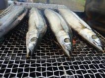 Mackerel barbecue Stock Photos