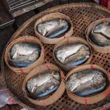 Mackerel basket Stock Image