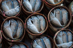 Mackerel basket Stock Photography