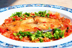 Mackerel braised with tomato sauce and onion stock photography