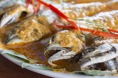 Mackerel with Curry made from coconut milk, chili. Royalty Free Stock Photography