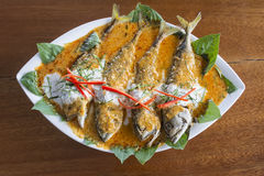 Mackerel with Curry made from coconut milk, chili. Royalty Free Stock Photo