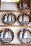 mackerel för bambukorgfisk Royaltyfri Fotografi