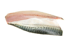 Mackerel Fillets Stock Image