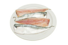 Mackerel fillets on a plate Stock Image