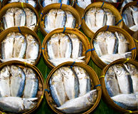 Mackerel fish in bamboo basket Royalty Free Stock Images