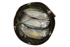 Mackerel fish in bamboo basket Stock Photos