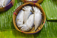 Mackerel fish. In bamboo basket Royalty Free Stock Image