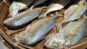 Mackerel fish in bamboo basket ready for cooking  at vendor kiosk Royalty Free Stock Photo
