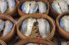 Mackerel fish in basket. At the market Royalty Free Stock Photo