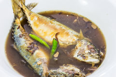 Mackerel fish boiled Stock Image