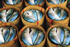 Mackerel fish in dish. The fish  prepare  made breakfast. In the morning on Thailand market Royalty Free Stock Images