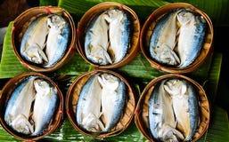 Mackerel fish, food. Mackerel in basket on the market Stock Photos