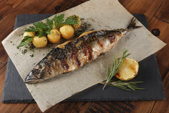 Mackerel fish fried with young potato. On shale surface. wooden background Stock Photos