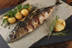 Mackerel fish fried. With young potato on slate surface. wooden background Royalty Free Stock Photos
