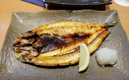 Mackerel fish grilled with soy sauce. Royalty Free Stock Photography