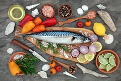 Mackerel Fish for Healthy Eating Stock Image