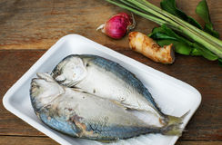 Mackerel fish and herb. Background Stock Image