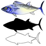 Mackerel Fish Illustration Stock Photography