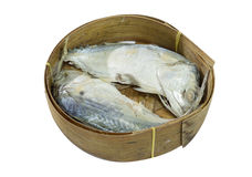Mackerel Fish isolated on white with clipping path. Thai Mackerel Fish isolated on white with clipping path Stock Image