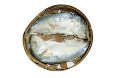Mackerel Fish isolated on white with clipping path. Thai Mackerel Fish isolated on white with clipping path Stock Images
